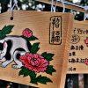 Japonia-w-czasie-hanami-04