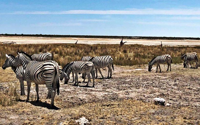 Namibia-kraj-zachodzacego-slonca-03