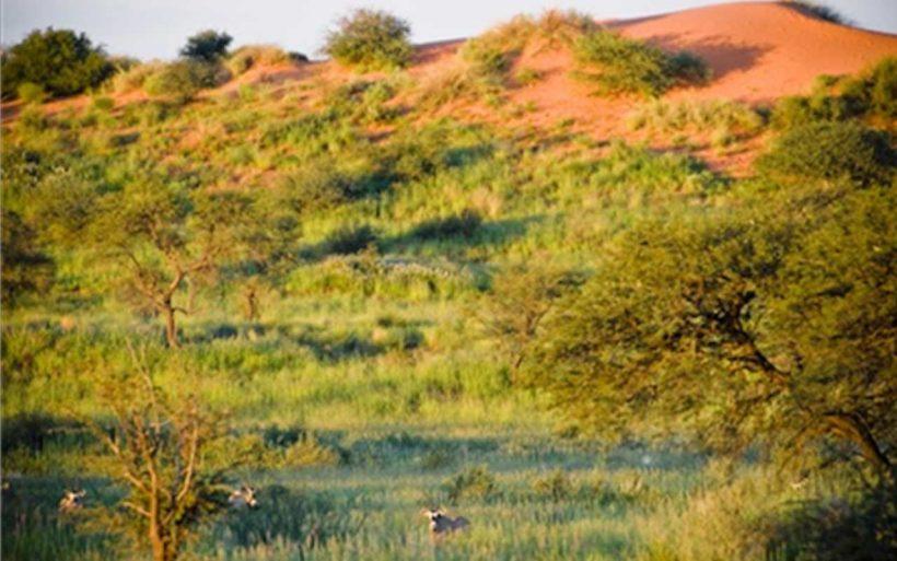 Namibia-kraj-zachodzacego-slonca-07