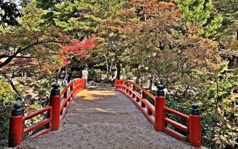 Japonska-zlota-jesien-w-czerwieni-klonow-05