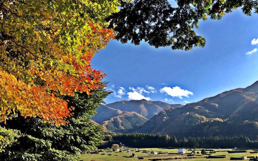 Japonska-zlota-jesien-w-czerwieni-klonow-07